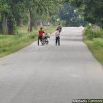ruralroad_200