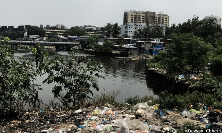 Mahim Creek_750